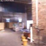 树的烟具,水烟视频252